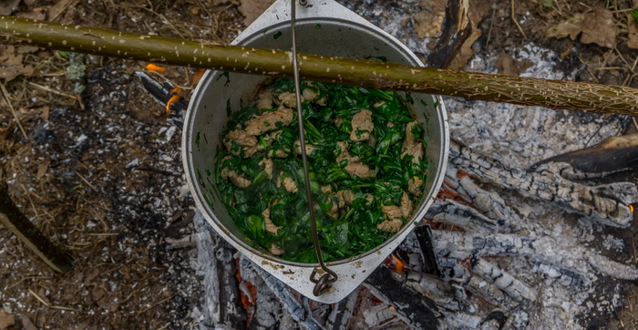 Свинина с черемшой Кулинария, Свинина, Черемша, Рецепт, Длиннопост, Еда
