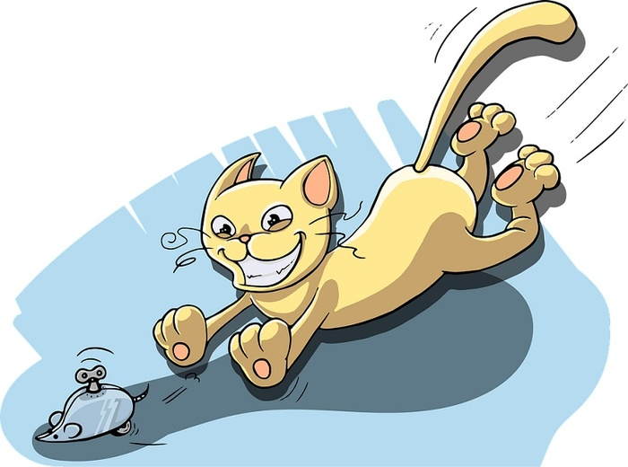Как поиграть со взрослым котом Кот, Питомец, Игры, Клубок, Хозяин, Погоня, Мясо, Нитки, Длиннопост