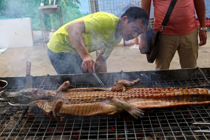 Мясо крокодила. Кулинария, Еда, Продукты питания, Крокодил, Длиннопост
