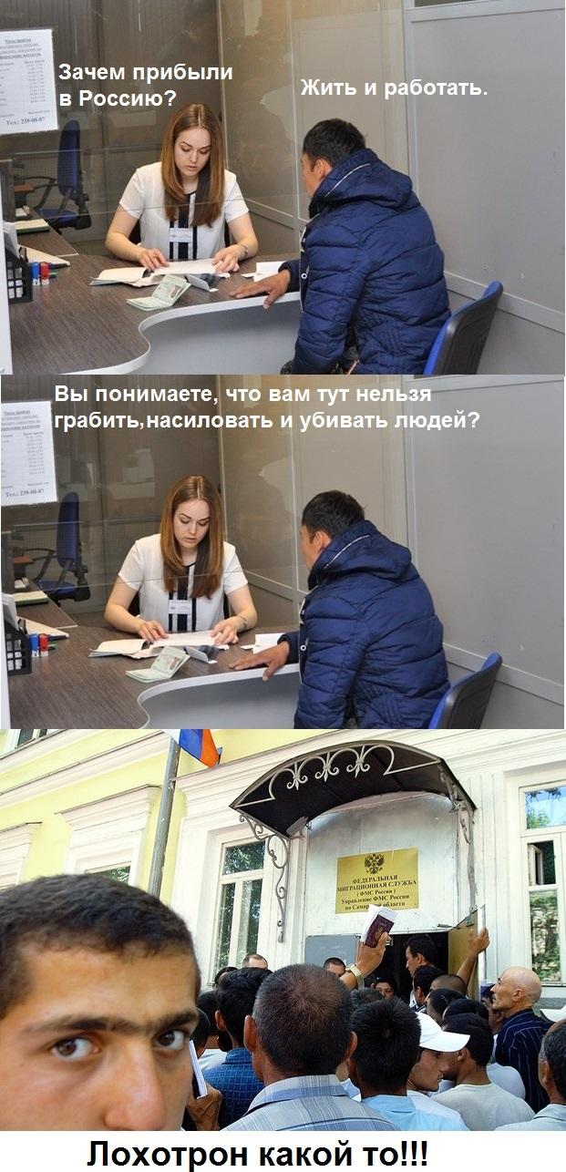 Лохотрон ) Мигранты, Законы РФ