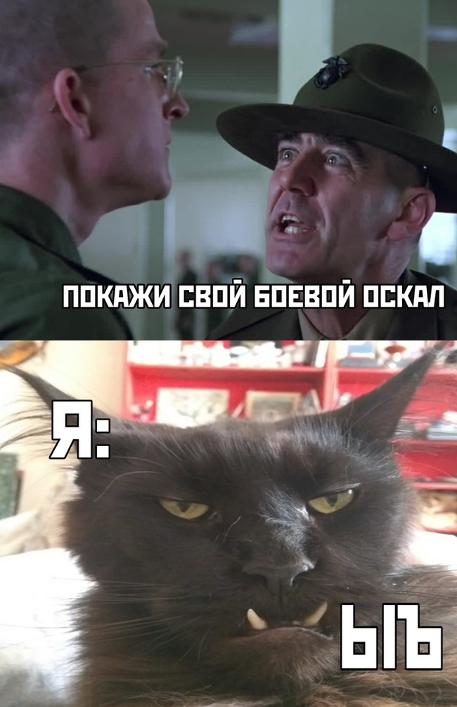 Когда ты в армии ...