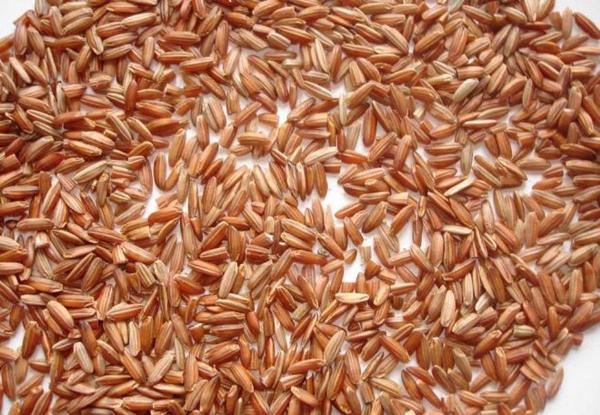 Виды и сорта риса. Рис, Кулинария, Длиннопост