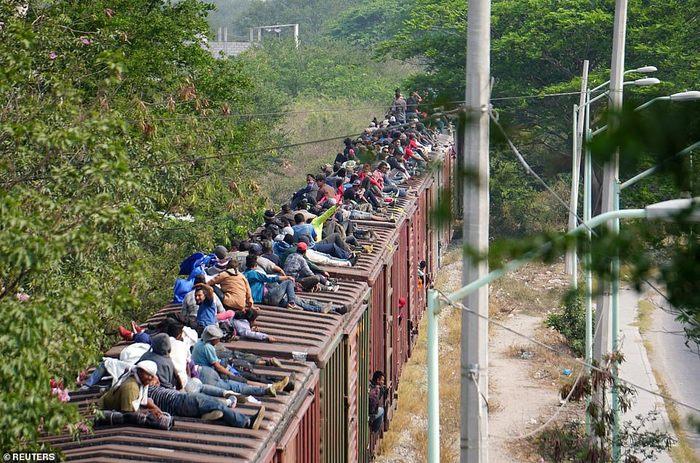 El США Новости, США, Америка, Американцы, Мигранты, Миграция, Нелегальная миграция, Картинки, Длиннопост