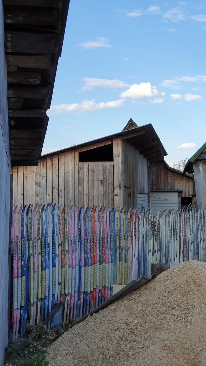 Просто забор из лыж Лыжи, Забор, Лакинск, Длиннопост