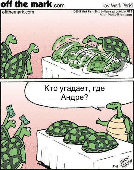 Черепаха-напёрсточник