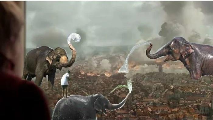 Так вот для чего ей нужны были слоны