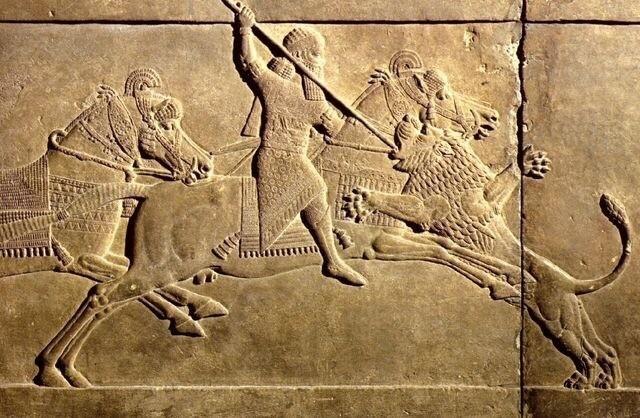 Ассирия. Охота на львов 2700 лет назад. История, Охота, Лев, Ассирия, Древний мир, Жестокость, Нравы, Длиннопост
