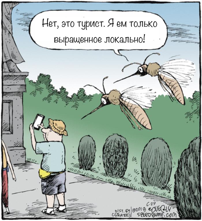 Комары-хипстеры