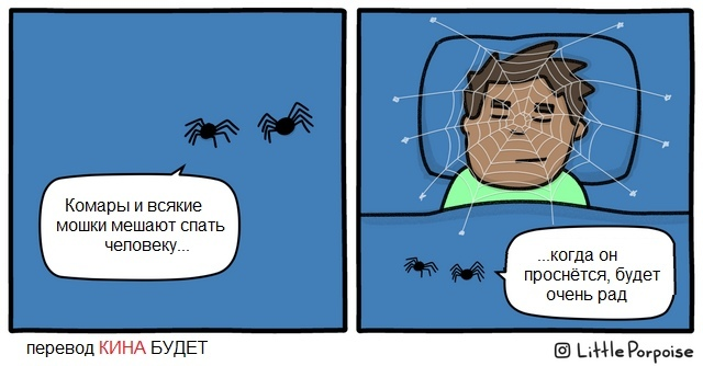 Дружелюбные пауки Паук, Паутина, Сон, Сюрприз