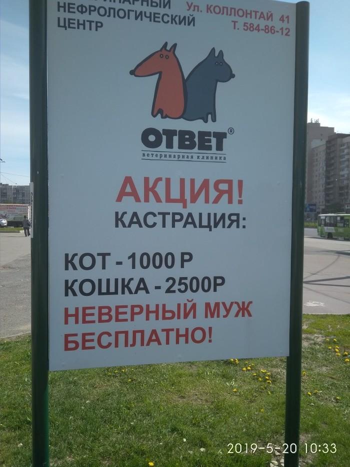 Мужей жалко! Измена, Вконтакте, Санкт-Петербург