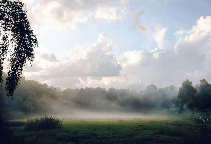 Расстилается туман Природа, Фотография, Nikon, Туман