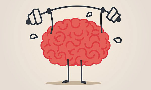 Топ-7 аспектов влияния тренировок на функции мозга Тренировка, Мозг, Спортзал, Спорт, Бодибилдинг, Выносливость, Фитнес, Физкультура