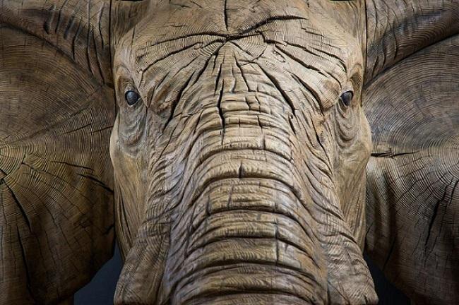 Резьба по дереву Резьба по дереву, Слоны, Фотография