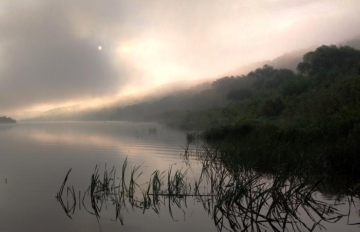 Утро на Оке Рассвет, Река, Природа, Пейзаж, Фотография