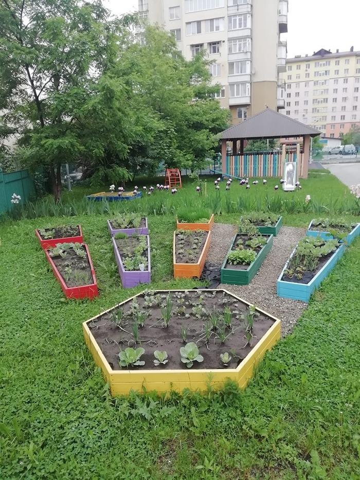 Когда ты ландшафтный дизайнер от Бога, но работаешь в детском саду Ландшафтный дизайн, Детский сад, Грядки, Гроб, Юмор