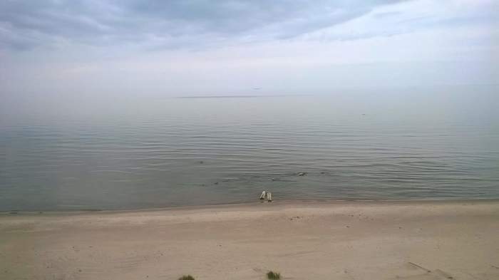 О взаимности. 2016 г. Балтийское море, Родное, Место