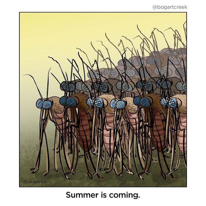 Как убрать укус комара за 20 секунд Комары, Укус, Лайфхак