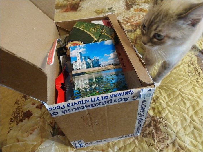 Кружкообмен. Астрахань - Петровск Кружкообмен, Обмен подарками, Длиннопост, Отчет по обмену подарками