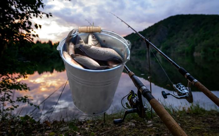 Полный садок: Шипелка в прикормку привлечёт всю рыбу с водоёма Рыбалка, Кислородная прикормка, Своими руками, Лайфхак, Яндекс Дзен, Длиннопост
