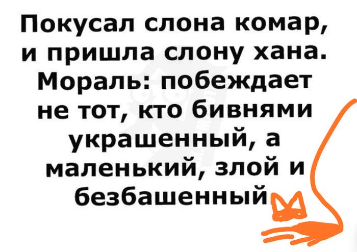 Как- то так 411... Исследователи форумов, Вконтакте, Обо всем, Как-То так, Подборка, Скриншот, Staruxa111, Длиннопост