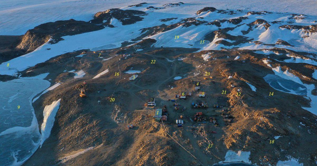 девицы новолазаревская антарктическая станция фото почетном месте