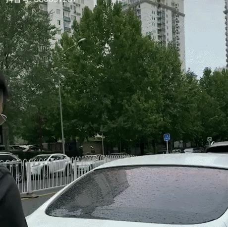 Багажник Bentley