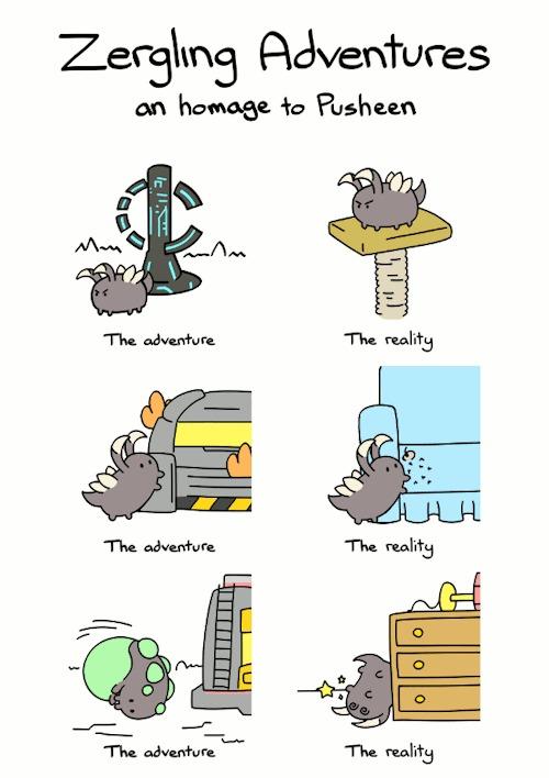 Приключение кота-зерглинга Starcraft, Zergling, Зерги, Кот, Игры, Компьютерные игры, Гифка, Pusheen