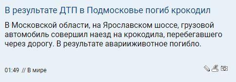 https://cs9.pikabu.ru/post_img/2019/10/03/4/157007736713897308.jpg