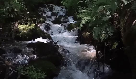 Горные реки и водопады Адлерского района Водопад, Река, Горы, Природа, Россия, Сочи, Адлер, Гифка, Длиннопост