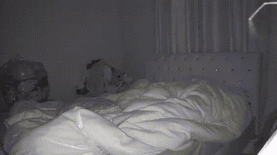 Думаю, сегодня я буду спать в другой комнате...