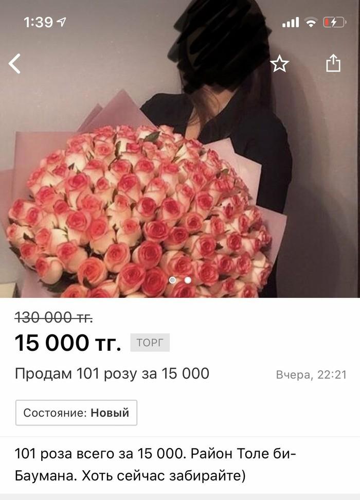 157215363619121847.jpg