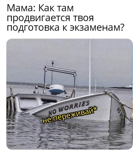 Экзамены Мемы, Перевод