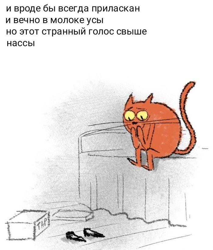 Котейское