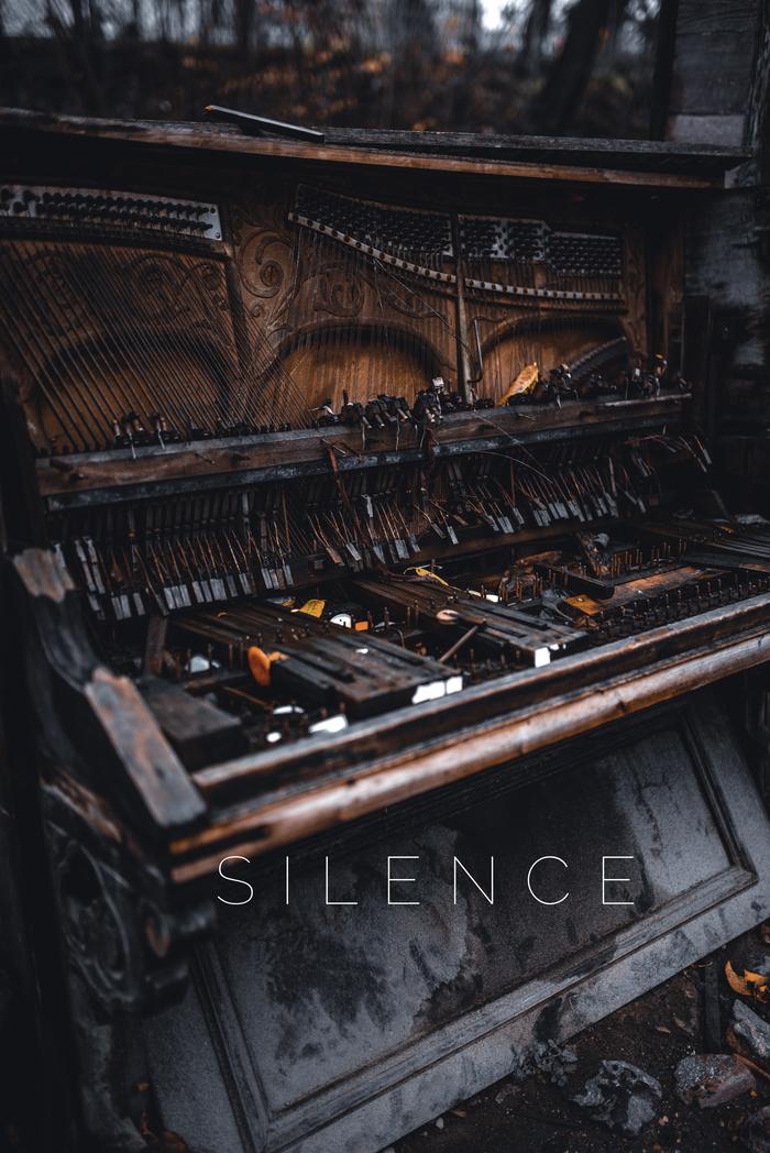 Звенящая тишина