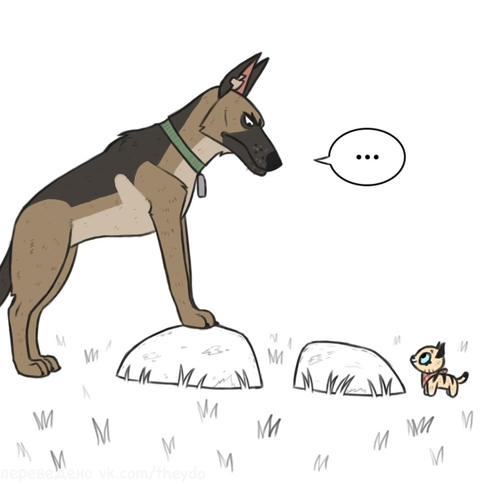 Вместе веселее Брут и Пикси, Pet Foolery, Кот, Собака, Веб-комикс, Длиннопост