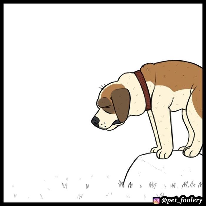 Брут и Хьюго Pet Foolery, Комиксы, Длиннопост