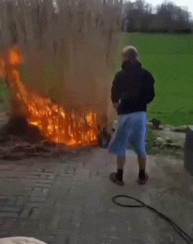 Когда попросили сжечь траву на заднем дворике