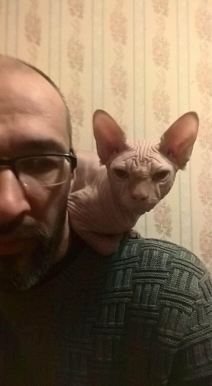 Леха-кот