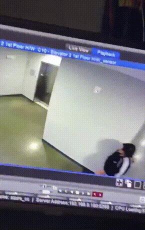 Лифт, собака и мужик
