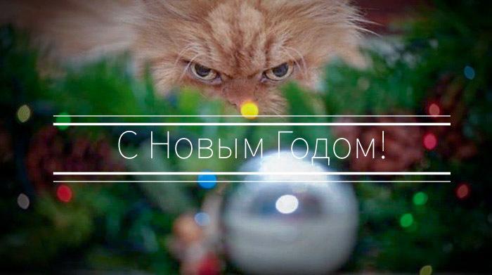 https://cs9.pikabu.ru/post_img/2019/12/31/4/1577767475171458023.jpg