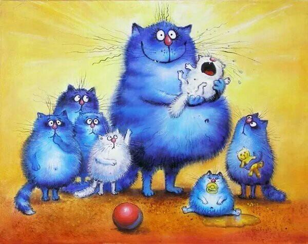 Даешь котизм! В новогодние праздники каждый из нас в чём то синий кот