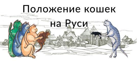 Не всё коту масленица: история кошек на Руси Кот, История, Россия