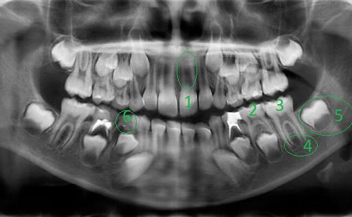 Почему у меня не было такого стоматолога???