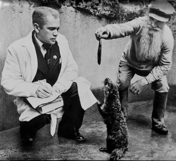 Канцлер Московского зоопарка
