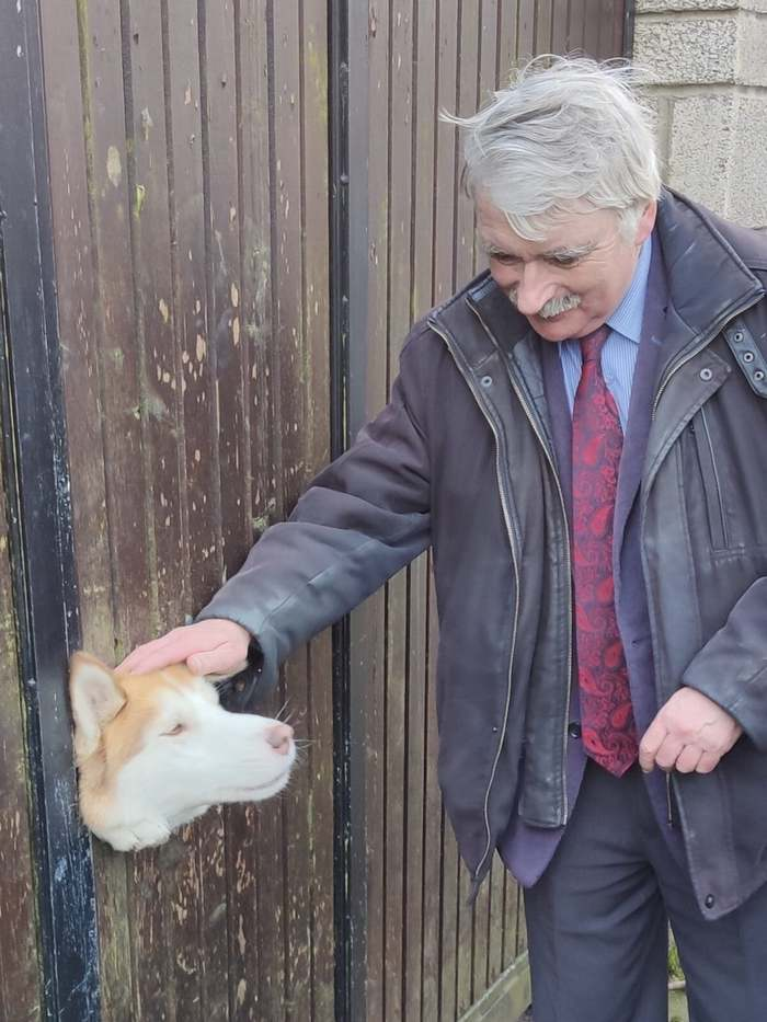 Когда весь день ходишь грустный, а потом встречаешь дружелюбного пёселя