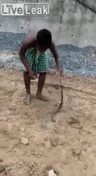 Как поймать змею
