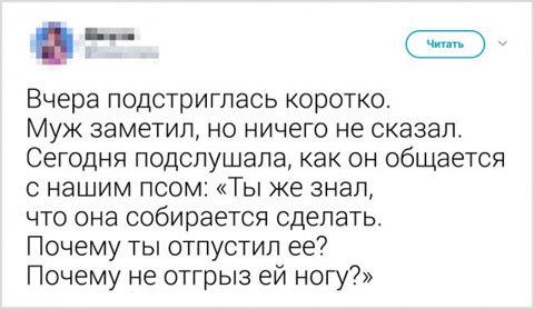 Да псу вообще по барабану)