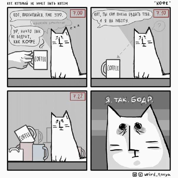 Кот, который не хочет быть котом #6 Комиксы, Авторский комикс, Кот, Юмор, Веб-комикс, Гифка