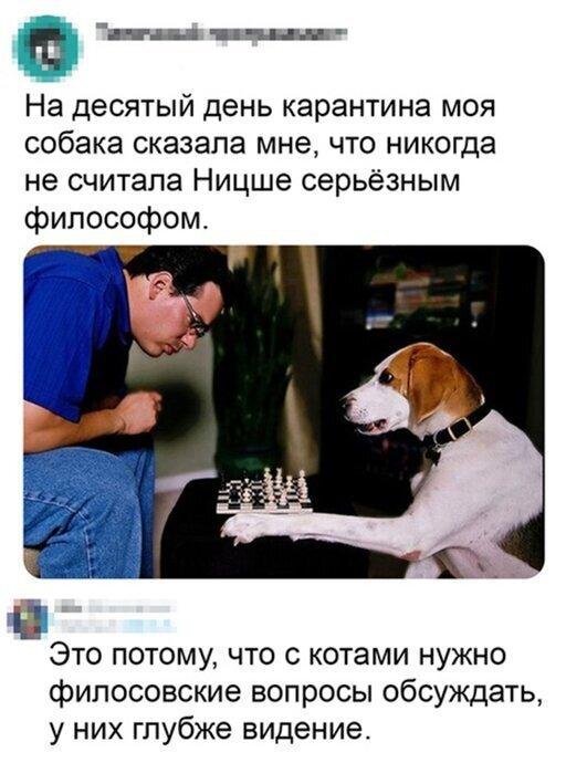1585670533183957582.jpg
