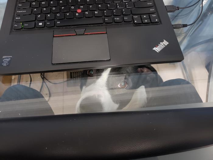 Купить стол со стеклянной столешницей было моей ошибкой